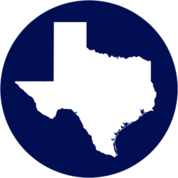 Texas S.T.A.P.